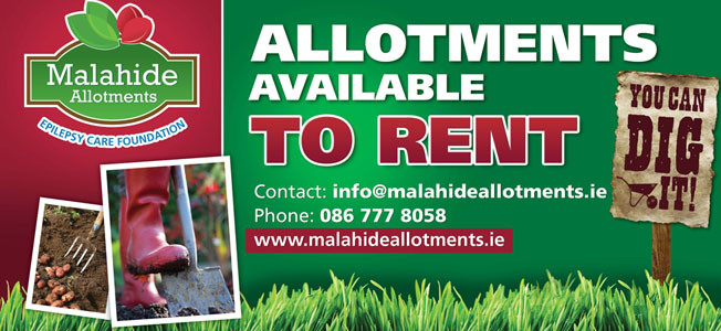Alotment to Rent