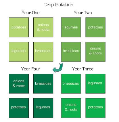 plot diagram definition